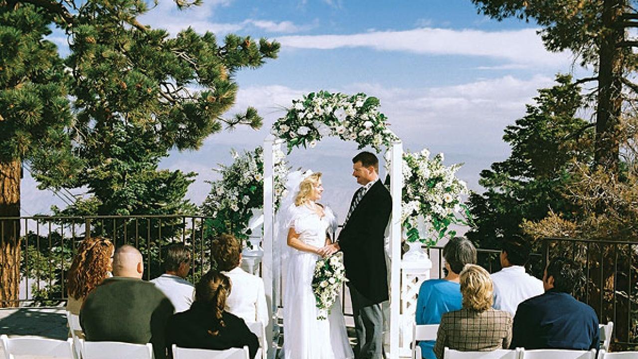 Elrod house palm springs wedding dress