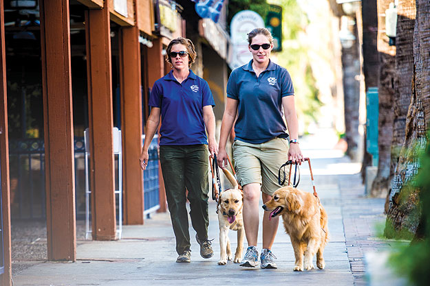 Greg and Peggy - Guide Dogs