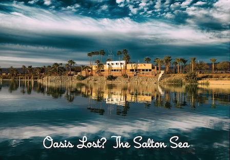 Photography Exhibit On The Salton Sea At E Williams Last Residential Project